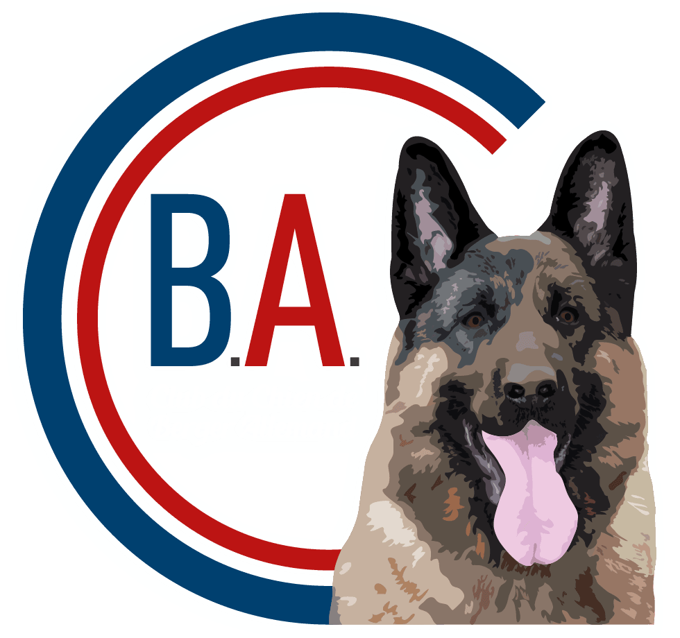 CCBA | Club Officiel du Chien de Berger Allemand